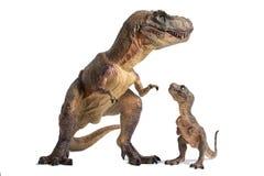 Tyrannosarierex med behandla som ett barn t-rex på vit bakgrund arkivbild