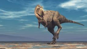 Tyrannosarierex på vit bakgrund Arkivbild