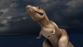 Tyrannosaure Rex Images stock