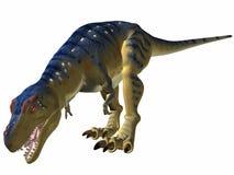 tyrannosaurus питья Стоковая Фотография RF