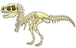 tyrannosaurus скелета изображения Стоковое фото RF