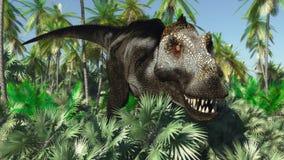 tyrannosaurus Immagine Stock Libera da Diritti