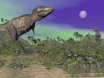 Tyrannosaurus - 3D render Royalty Free Stock Photography