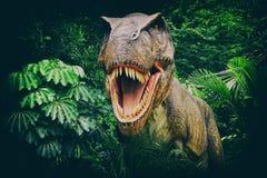 tyrannosaurus Стоковое фото RF