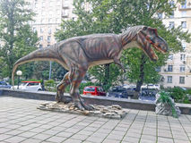 Tyrannosaurus Zdjęcie Stock