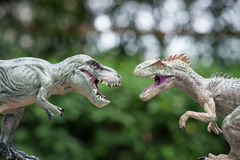 Tyrannosaurus and allosaurus toy Royalty Free Stock Image