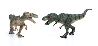 Tyrannosaurus and allosaurus toy on white background Stock Images