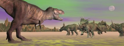 Tyrannosaurus attacking styracosaurus - 3D render Stock Photography