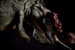Tyrannosaurus biting piece of a dinosaur body on dark. Background stock images