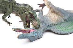 Tyrannosaurus biting spinosaurus on white Stock Image