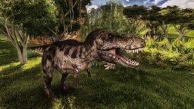 Tyrannosaurus Stock Image