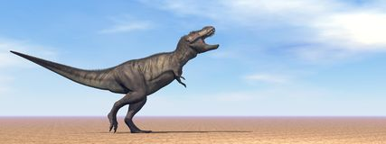 Tyrannosaurus dinosaur in the desert - 3D render Royalty Free Stock Images