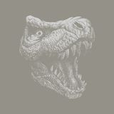 Tyrannosaurus Dinosaur . Hand drawn. Vector eps8 Royalty Free Stock Photo