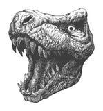 Tyrannosaurus Dinosaur . Hand drawn. Vector eps8 Stock Image