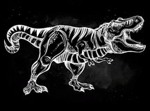 Tyrannosaurus Dinosaur Vector Illustration. Tyrannosaurus Dinosaur. Highly detailed T-Rex.  vector illustration. Ideal for coloring page, shirt design effect Royalty Free Stock Image