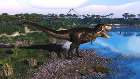 Tyrannosaurus 2. The dinosaurs Tyrannosaurus Rex lived in Northamerica. He was the giant of the dinosaur Stock Photography