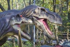 Tyrannosaurus en allosaurus Stock Foto's