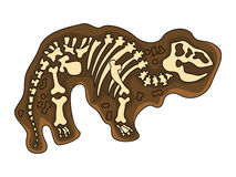Tyrannosaurus-Fossil Lizenzfreie Stockfotografie