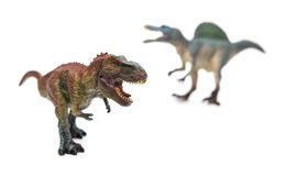 Tyrannosaurus in front of spinosaurus on white. Selective focus Royalty Free Stock Photos