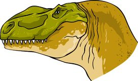 Tyrannosaurus head natural ferocious dinosaur fossil. Carnivore meat eating illustration Stock Photos