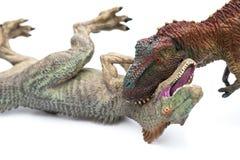 Tyrannosaurus het bijten allosaurus op wit Royalty-vrije Stock Afbeeldingen