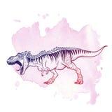 Tyrannosaurus huczenie na Grunge tle Obrazy Stock