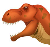 Tyrannosaurus. Illustration of a closeup of tyrannosaurus head Royalty Free Stock Photos