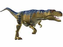 Tyrannosaurus-looppas Royalty-vrije Stock Foto's