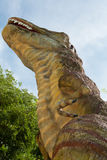 Tyrannosaurus Royalty Free Stock Image