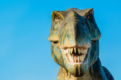 Tyrannosaurus in Novi Sad Dino Park Royalty Free Stock Image