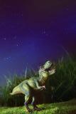 Tyrannosaurus op gras bij nacht Stock Foto's