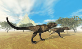 Tyrannosaurus Rex. Two Tyrannosaurus Rex dinosaurs are on the hunt for prey Stock Image