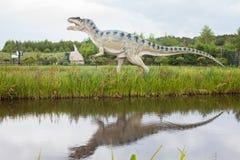 Tyrannosaurus rex Obraz Royalty Free