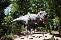 Tyrannosaurus Rex Stockbilder