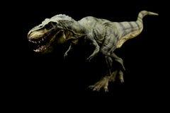 Tyrannosaurus Rex Royaltyfria Bilder