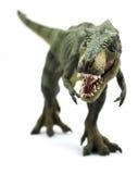 Tyrannosaurus Rex Arkivfoton