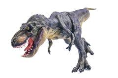 Tyrannosaurus Rex Stock Afbeeldingen