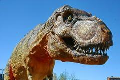Tyrannosaurus Rex Zdjęcia Royalty Free