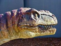 Tyrannosaurus Rex Fotografia Stock