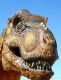 Tyrannosaurus Rex Zdjęcie Royalty Free