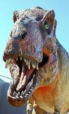 Tyrannosaurus Rex Obrazy Royalty Free
