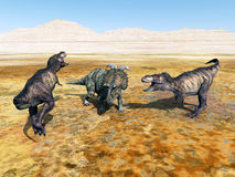 Tyrannosaurus Rex and Albertaceratops Stock Photography