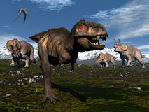 Tyrannosaurus rex attacked by triceratops. Tyrannosaurus rex attacked by three triceratops dinosaurs in the mountain - 3D render Royalty Free Stock Photography
