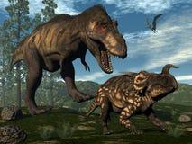 Tyrannosaurus rex attacking einiosaurus dinosaur Royalty Free Stock Photography