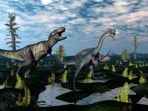 Tyrannosaurus rex attacking gigantoraptor dinosaur Royalty Free Stock Photos