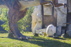 Tyrannosaurus Rex. Attacking Tyrannosaurus Rex with its egg.automated figure in park Stock Photos
