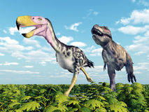 Tyrannosaurus Rex attacks the Terror Bird Kelenken Royalty Free Stock Photo