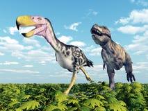 Tyrannosaurus Rex attacks the Terror Bird Kelenken Royalty Free Stock Photo