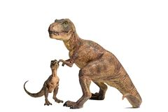 Tyrannosaurus rex with baby t-rex on white background. A lovely couple of Tyrannosaurus rex with baby t-rex on white background royalty free stock photography