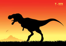 Tyrannosaurus rex background Stock Photos